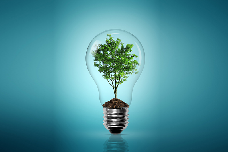 Hertfordshire is proactively encouraging the growth of new, low carbon industries